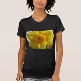 flower,daffodil shirt