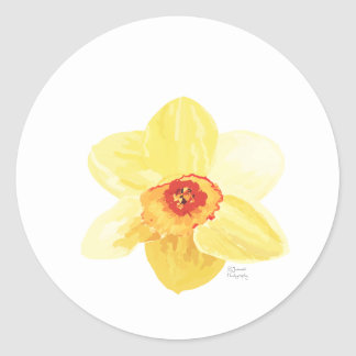 flower Daffodil Żonkila Classic Round Sticker