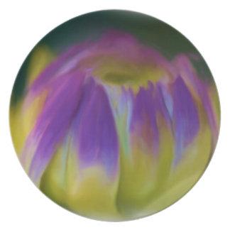 Flower Dahlia Bud Plate
