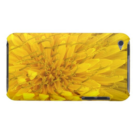 Flower - Dandelion Barely There iPod Cover
