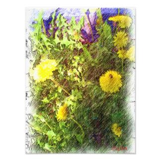 Flower dandelion photo print