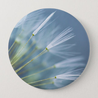 Flower Dandelion Seed Head Button