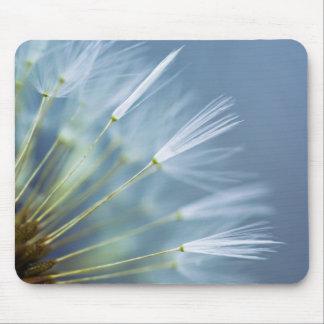 Flower Dandelion Seed Head Mouse Pad