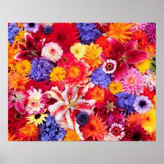 Flower design of Dalhia, Oriental Lilies, Poster