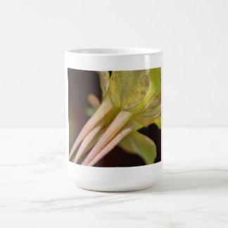 Flower Details Mug
