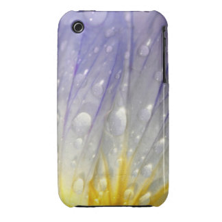 Flower Dew iPhone 3 Covers