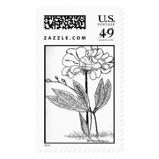 Flower Drawing Postage Stamps