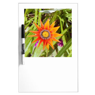 Flower Dry Erase Board