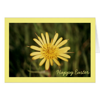 Flower Easter card with yellow Goat's Beard
