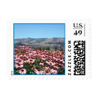 Flower Field in Santa Cruz Postage
