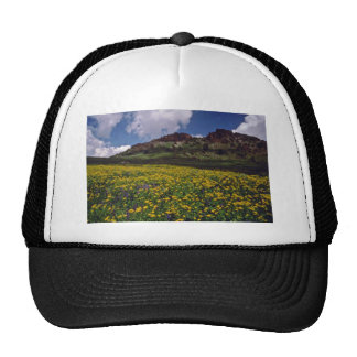 Flower fields near Sonora Pass, California Pink fl Mesh Hats
