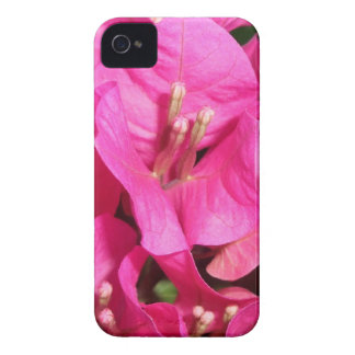 Flower fire iPhone 4 Case-Mate cases