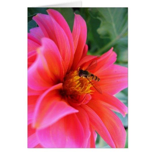 flower flie card