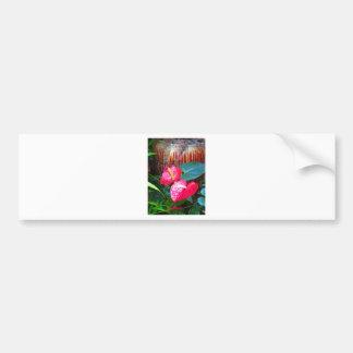 Flower Floral photos from Longwood Gardens Bumper Sticker