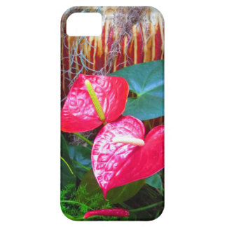 Flower Floral photos from Longwood Gardens iPhone SE/5/5s Case
