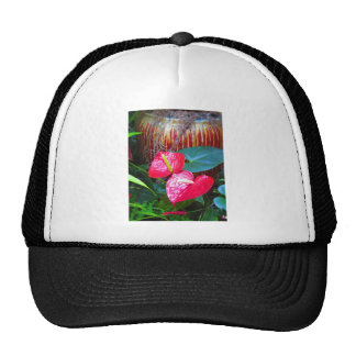 Flower Floral photos from Longwood Gardens Trucker Hat