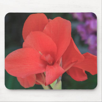 Flower found in the gardens of the D. Carlos I Mouse Pad