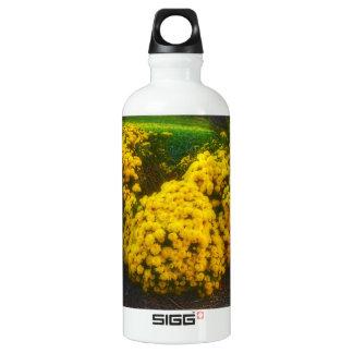 flower garden aluminum water bottle