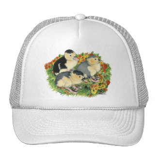 Flower Garden Ducklings Trucker Hat