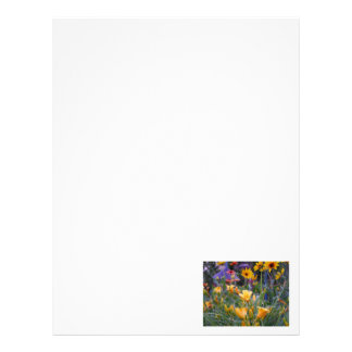 Flower garden fun colorful pretty summer photo letterhead