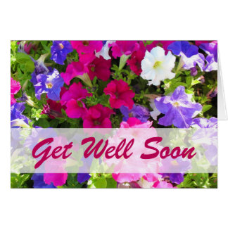 Purple Flowers Get Well Gifts on Zazzle
