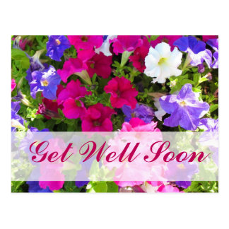 flower garden Get Well Soon Postcard