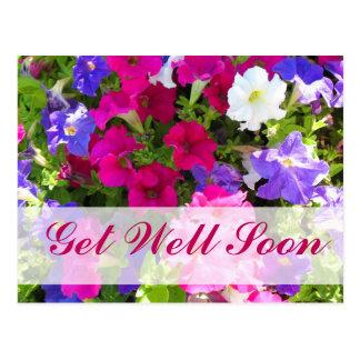 flower garden Get Well Soon Postcard