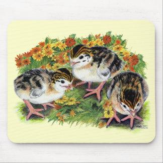 Flower Garden Keets Mouse Pad