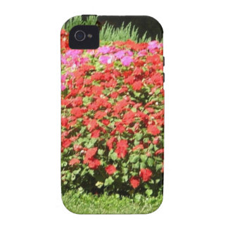 Flower Garden of Pink Red Flowers Next to Grass Vibe iPhone 4 Cases