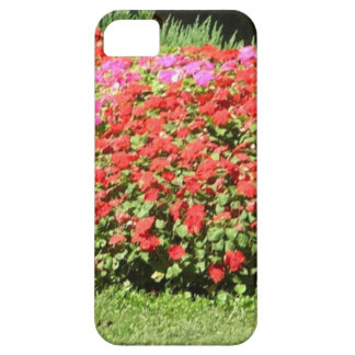 Flower Garden of Pink Red Flowers Next to Grass iPhone 5 Cases