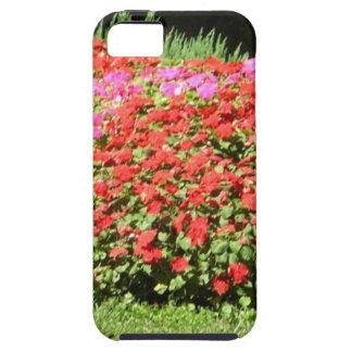 Flower Garden of Pink Red Flowers Next to Grass iPhone 5 Case