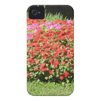 Flower Garden of Pink Red Flowers Next to Grass iPhone 4 Cover