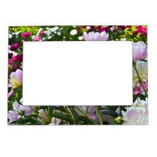 Flower Garden (Peonies) Magnetic Picture Frame