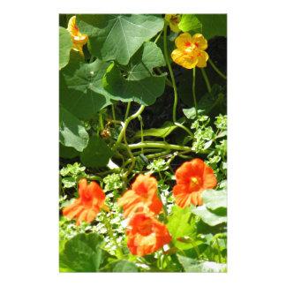 Flower Garden Stationery