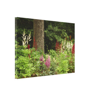Flower garden Stretched Canvas Print