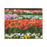 Flower Garden Stretched Canvas Prints