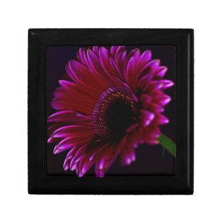 Flower Gerbera Gift Box