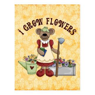 Flower Grower Postcard