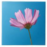 Flower - Growing up in Philadelphia Tile