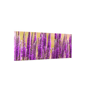Flower - I dream of lavender Canvas Print