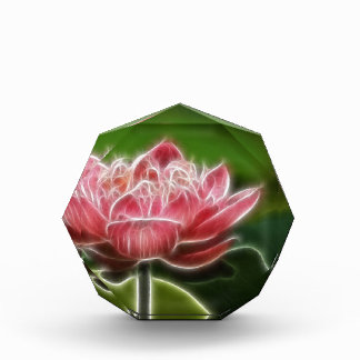 Flower Image Acrylic Award