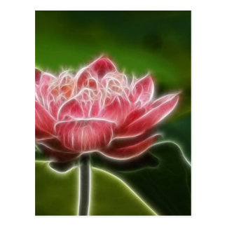 Flower Image Postcard