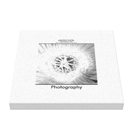 Flower in Black and White Gallery Wrapped Canvas