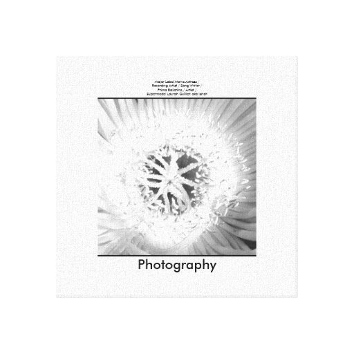 Flower in Black and White Gallery Wrap Canvas