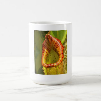 Flower In Bloom Classic White Coffee Mug