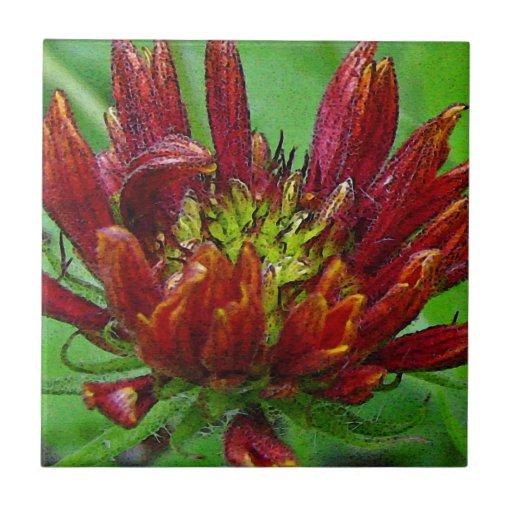 Flower in bloom red on green ceramic tiles