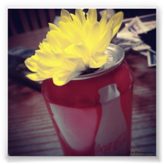 Flower in Can Photo Print