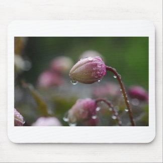 Flower in dew mousepads