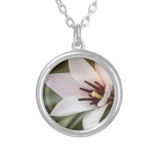 flower in spring silver plated necklace