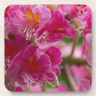 flower in the garden drink coaster